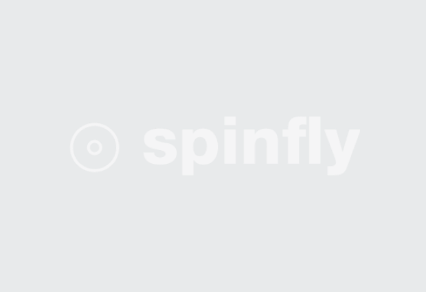 Spinfly
